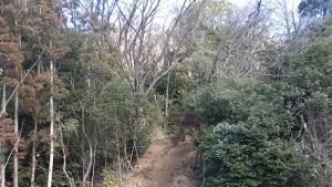 散策の森ゾーン